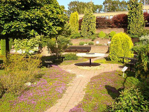 Museets trädgård i sommarskrud